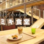 子どもが行きたがるカフェ!巨大なキッズスペースがある「ツミキ食堂」
